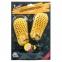 Электросушилка для обуви Домовенок Комфорт ЕС 12/220 3